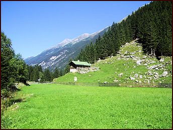 Zollhütte Zillergrund - Holiday cabin and surroundings